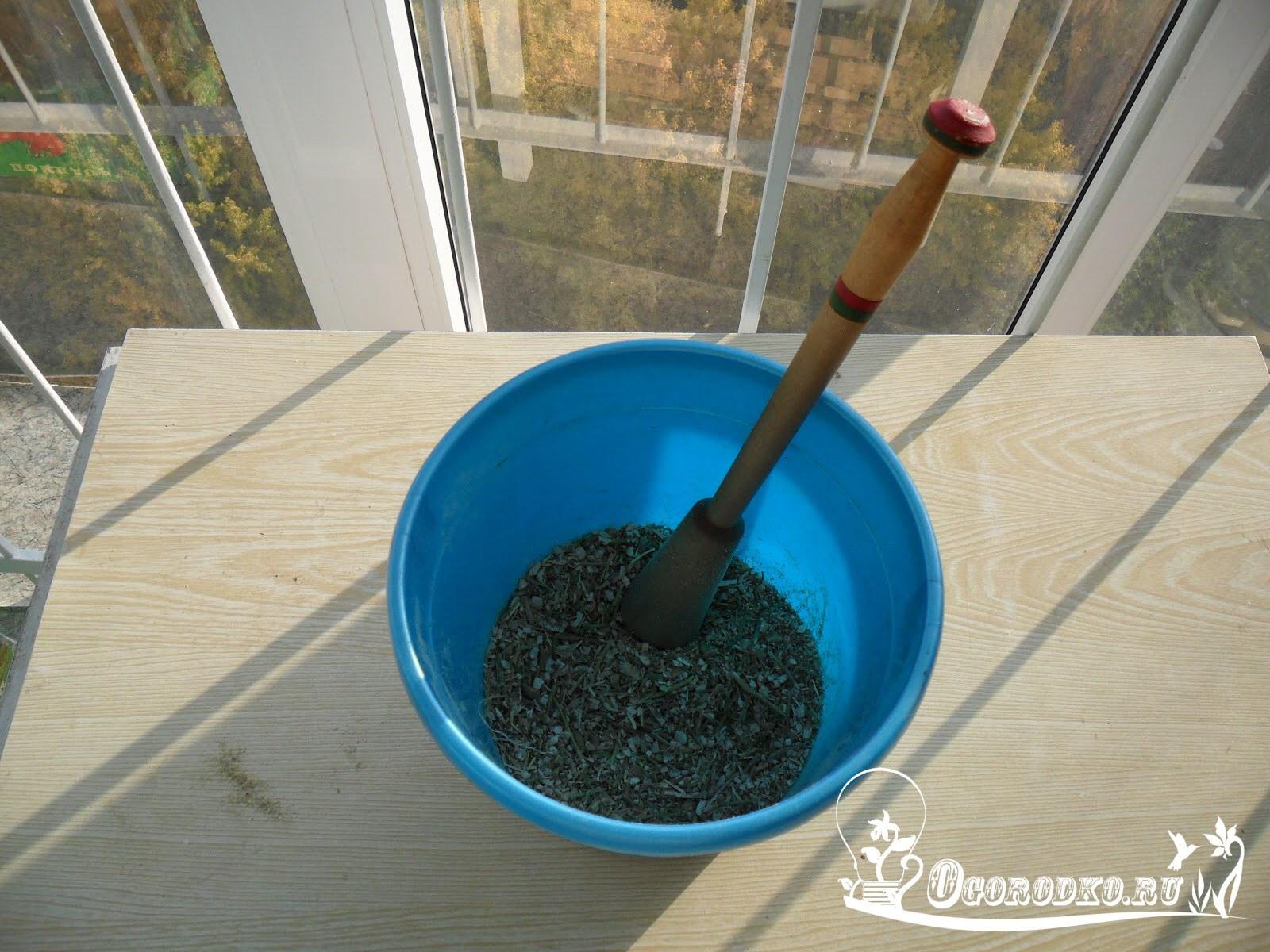 Как извлечь семена редиски