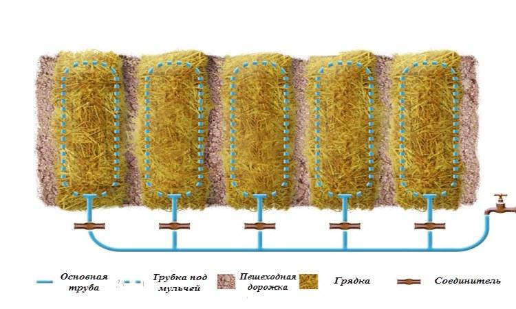 Схема системы капельного полива