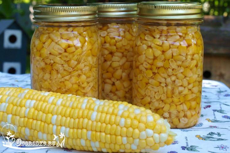 Кукуруза на зиму в домашних условиях пошаговый рецепт