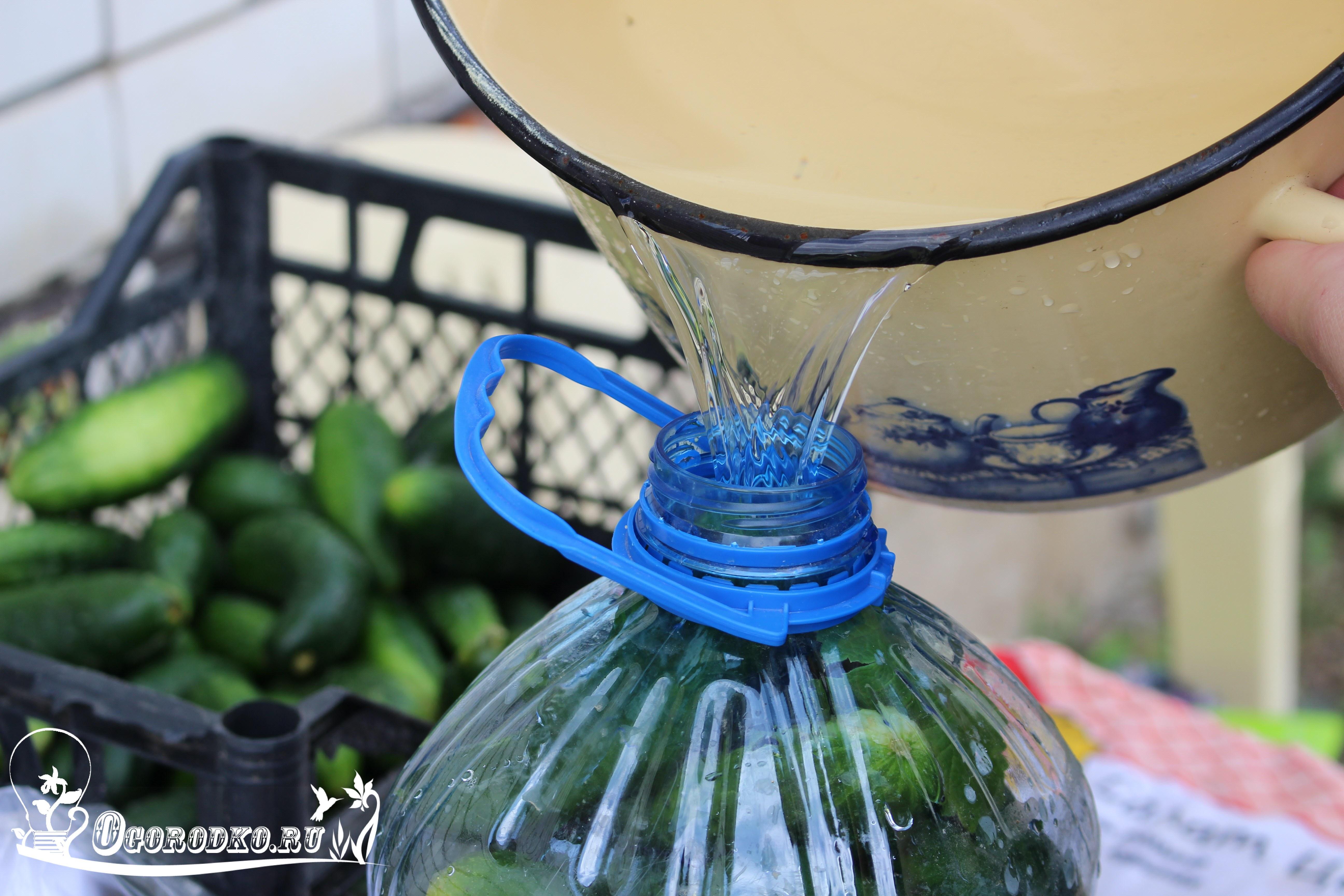 заливаем бутылки рассолом