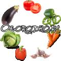 Огородко — садовод и огородник в одном месте!