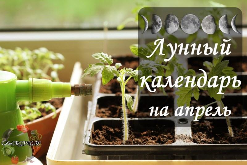 Lunnyy posevnoy kalendar' na aprel' 2017 goda