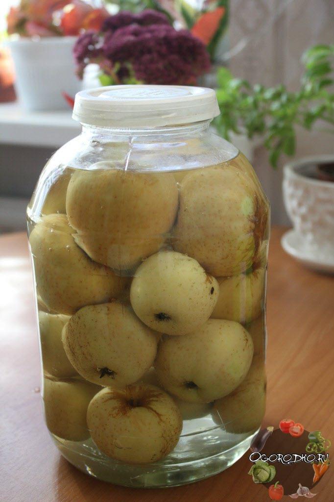 Моченые яблоки в банках в домашних условиях