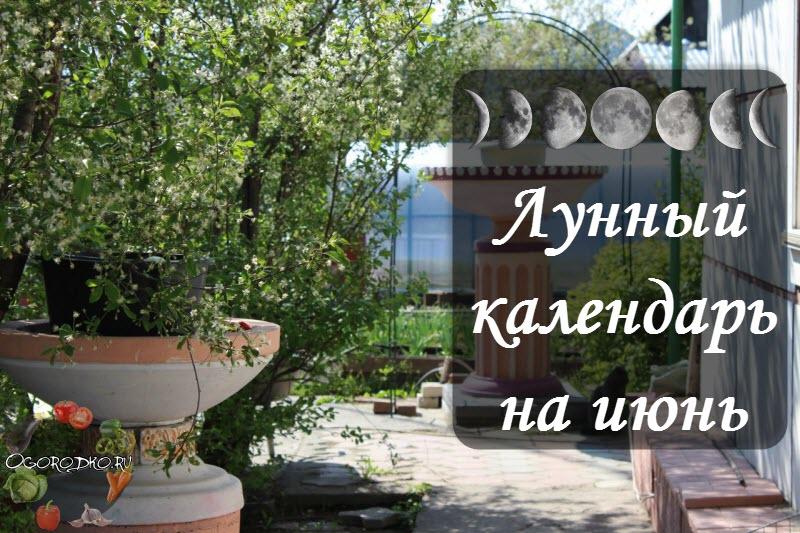 лунный посевной календарь на июнь