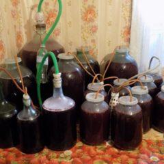 Домашнее вино из варенья, как приготовить вкусное вино без проблем