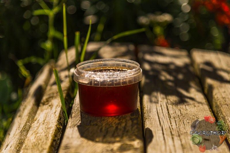 Шишкин мед, рецепт