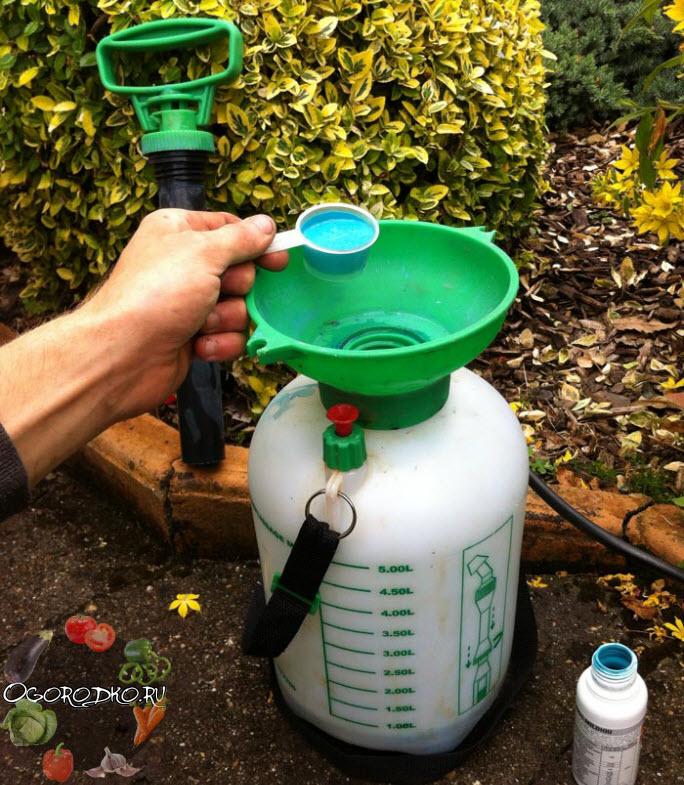 Медный купорос применение в садоводстве инструкция