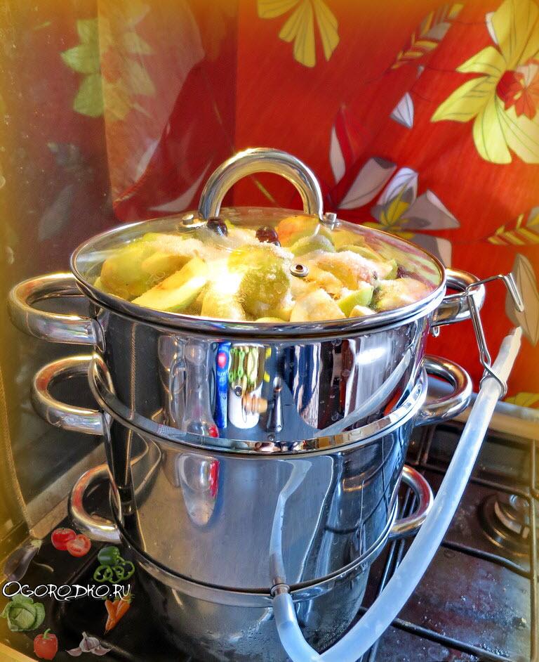 Заготовить яблочный сок в домашних условиях 477