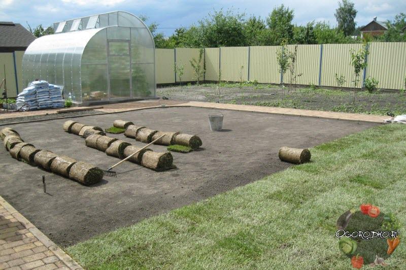 Как укладывать рулонный газон самостоятельно