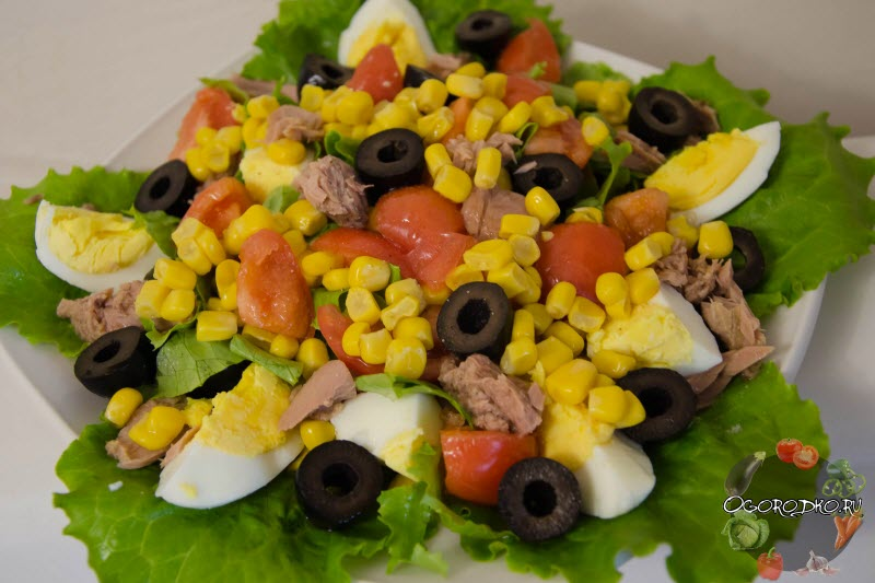 классический салат из тунца консервированного рецепт с фото