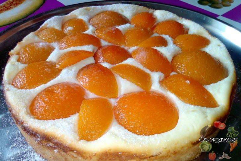 Творожный пирог с половинками абрикосов