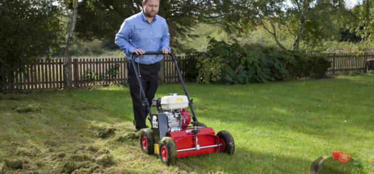 Скарификатор – что это такое для газона, принцип работы, особенности выбора