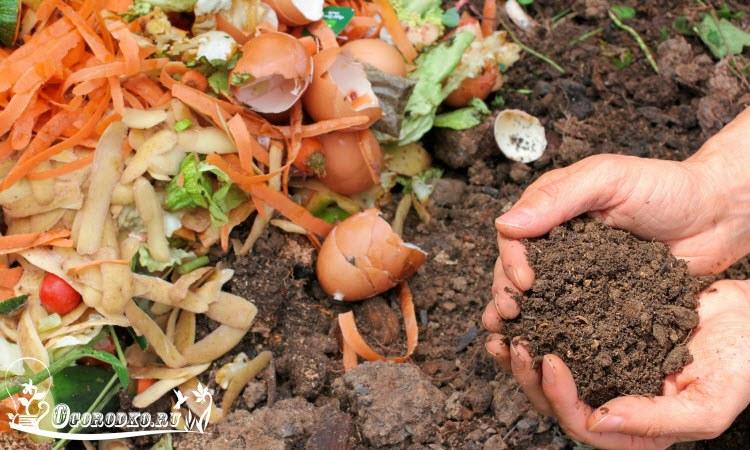 Как сделать компост своими руками