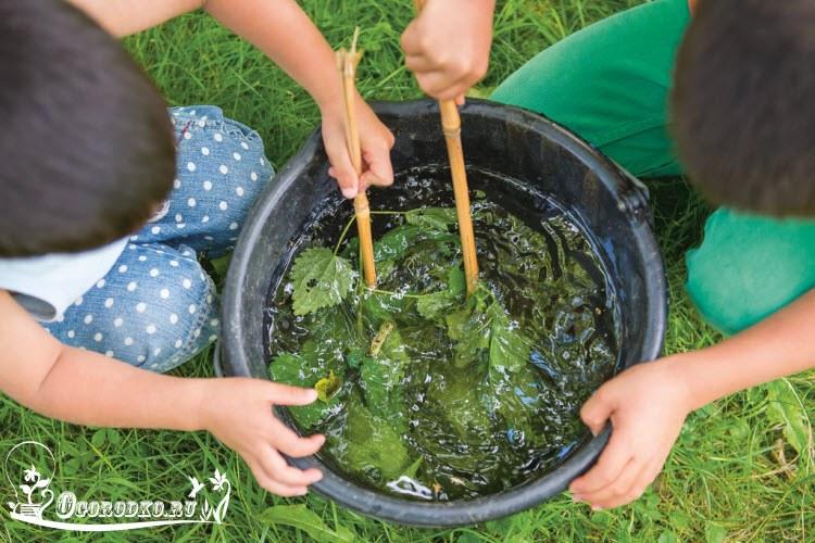 органическое удобрение для клубники