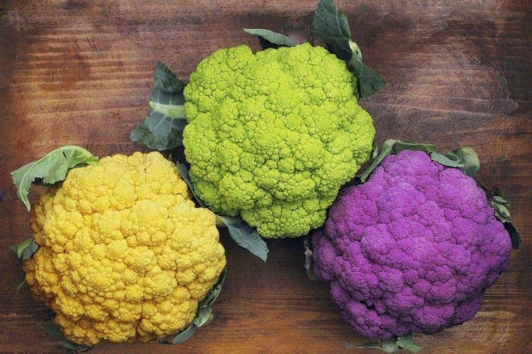 сорта цветной капусты