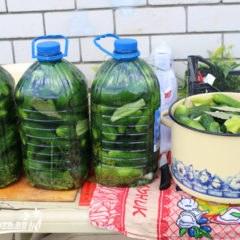 огурцы в пластиковой бутылке - лучший рецепт хрустящих огурчиков быстро и просто