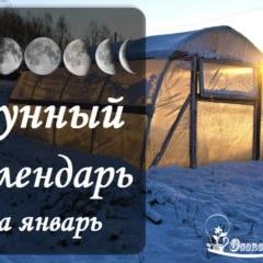 Лунный календарь садовода-огородника на январь