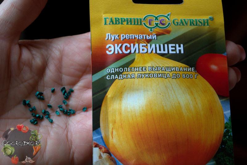 семена эксибишен