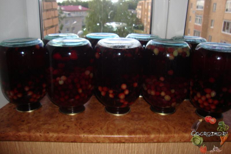 компот вишневый с крыжовником, рецепт приготовления