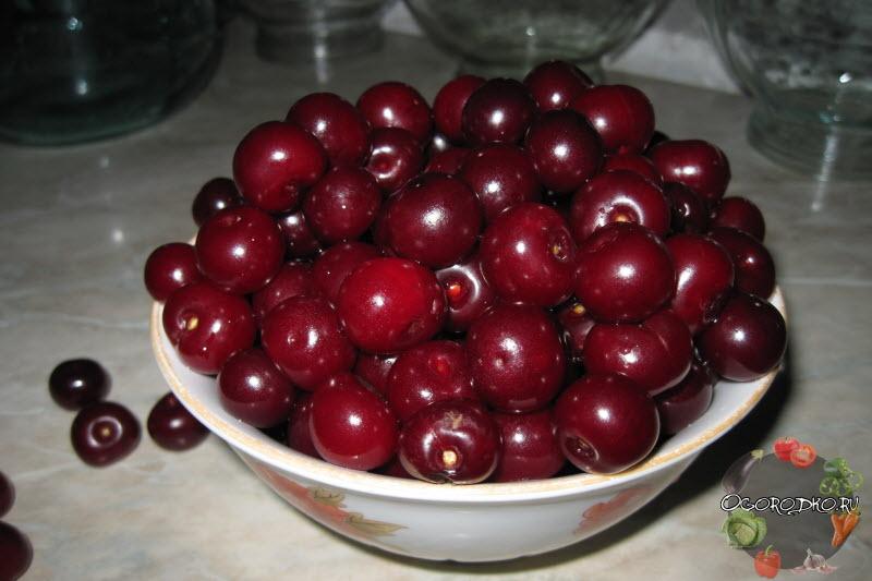 подготовка вишни для компота по рецепту