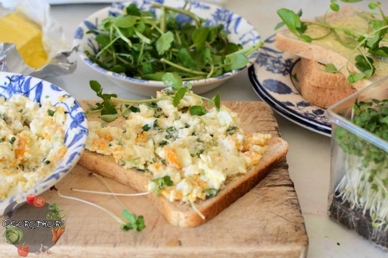 кресс-салат рецепт