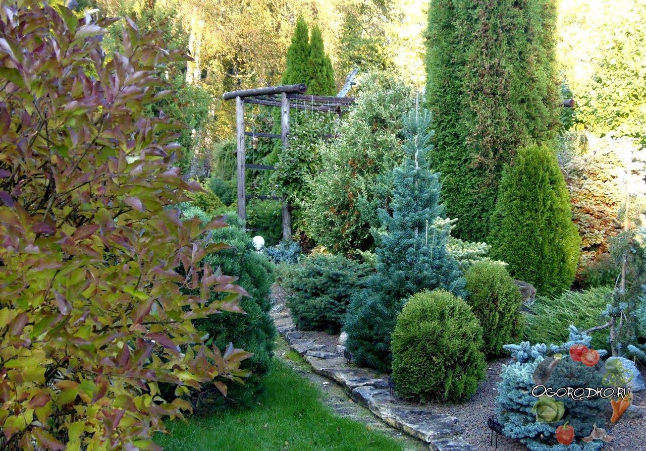 дизайн садового участка, примеры с фото