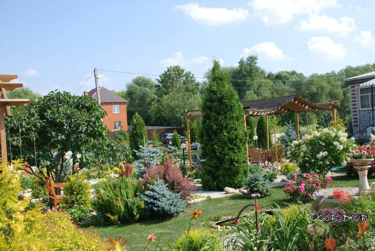 образец садового участка