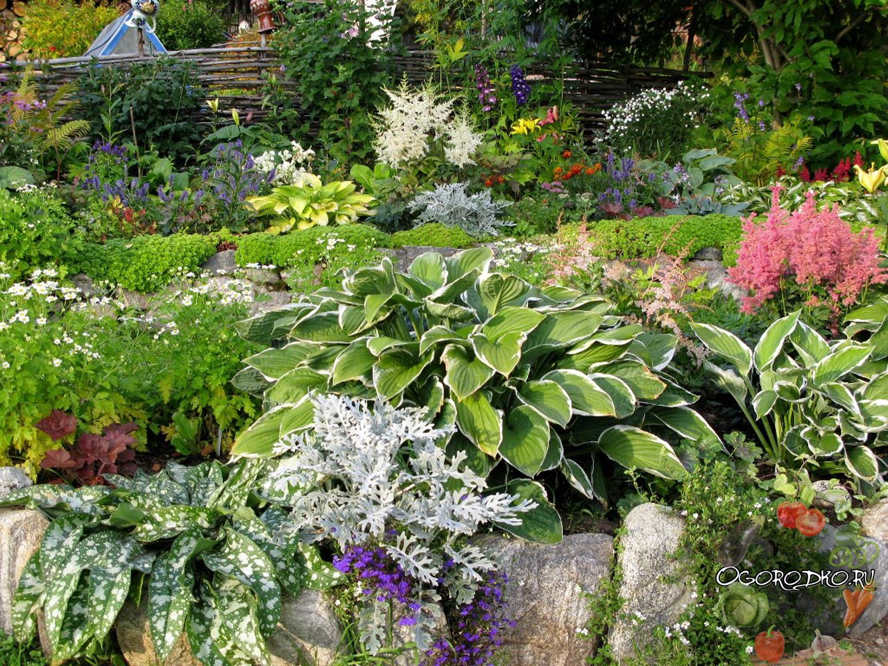 планировка сад