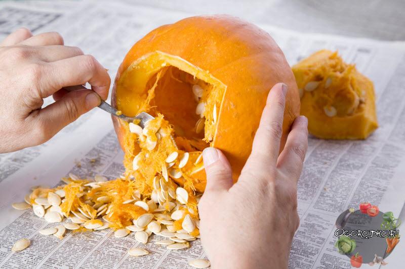 калорийность тыквенных семечек
