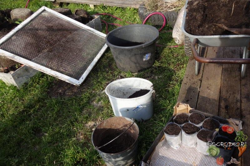 грунт для посадки рассады арбузов